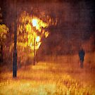 October Walk by Friederike Alexander