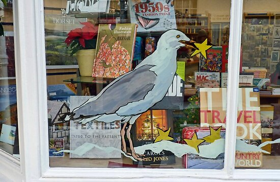 Lyme Bookshop Window by lynn carter