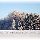 White Christmas card # 1 by Ritva Ikonen