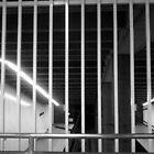 bars of subway poverty by catnip addict manor