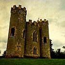 Blaise castle, Bristol, UK by buttonpresser