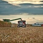 Harvesting on the Go by Studio601