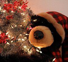Merry Christmas Bear by djackson