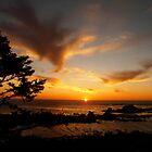 sunset on the oregon coast by tego53