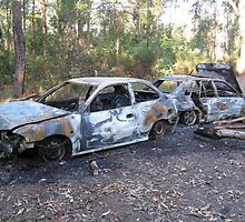 Two torched cars in the bush by darkfirev3