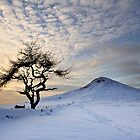 Winter Sun - Roseberry Topping, UK by Ian Snowdon /     www.downtoearthimages.co.uk