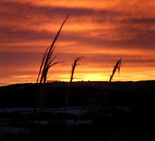 Sunrise, Monreith Dec 9th 2010 by sarnia2