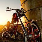 Customized Bike by Angi Allen
