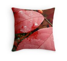 We Three Leaves  Of Burning Bush Are Throw Pillow