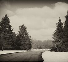 Winter In Wisconsin by JessPeterson