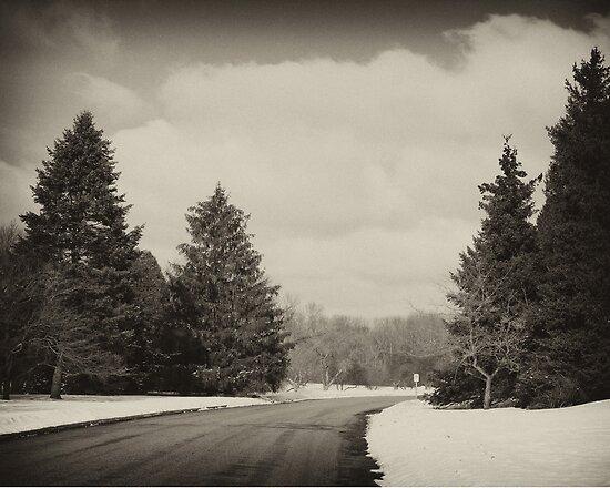 Winter In Wisconsin by JessPeterson