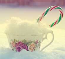 Peppermint Winter by ©Maria Medeiros