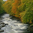 River Dochart, Killin by Fiona MacNab
