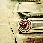 Classic Ford Fairlane by mikebone