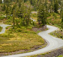 Curvy Road to Artist Point by Barb White
