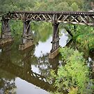 Gundagai Railway Bridge by Dennis Wetherley