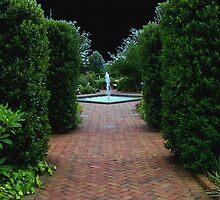 Path to Wonderland by Rachel Williams