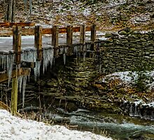 Icy Stream Crossing by Pamela Phelps