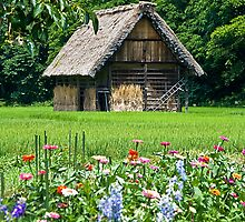 Gassho Style Barn, Japan by mncphotography