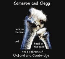 Cameron and Clegg by taiche