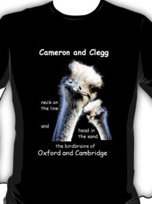 Cameron and Clegg T-Shirt