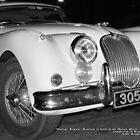 Vintage Jaguar; Route 66 Entusiast; Long Beach, CA USA by leih2008