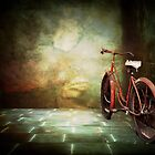 The Bicycle by Debra Fedchin