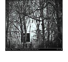 Phantoms' Residence by Pantea Teodor Radu