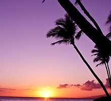 Purple Maui Sunset by Angelina Hills