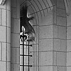 Campus window by Sandra Guzman