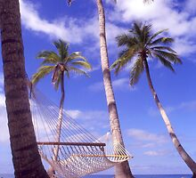 """Caribbean Bliss"" - hammock in the tropics by John Hartung"