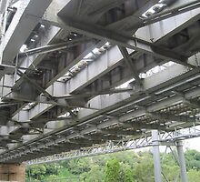 Indooroopilly Bridges I by Hugh Fathers