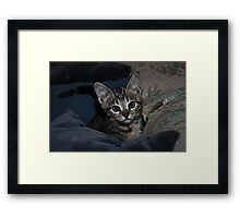 For your... Framed Print