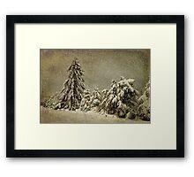 Winter's Wrath Framed Print