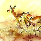 Impala on the run.  by Shirlroma