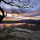 Windermere From Jenkins Crag by Leon Ritchie