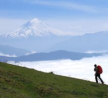 Damavand, the highest summit in Iran by damghani