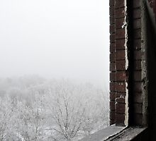Frosty view by Ben Jones
