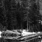 Heather Lake Reflections by Rakesh Malik