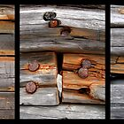Swedish Wreck Triptych by Miguel Rosado Boulet