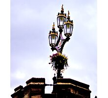 Crown of Gold Photographic Print