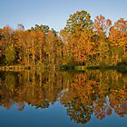 Reflections of Fall by David Stegmeir