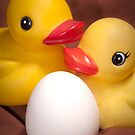 """EGGspecting"" - rubber duckies couple expecting by John Hartung"