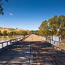 Murrumbidgee River In Flood 3 by rudolfh