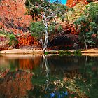 Ormiston Gorge by Gwynne Brennan