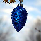 Different fir cone by TriciaDanby