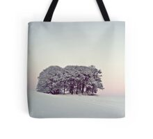 Pastels In The Scottish Snow. Tote Bag