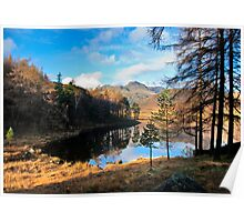 A Wonderful View of Blea Tarn Poster