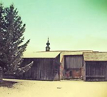 Around Winter Barn 2 by picontagious