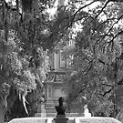 Forsyth Park by Christopher Clark